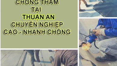 cong-ty-dich-vu-chong-tham-dot-tai-thuan-an